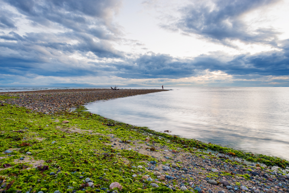 Davis Bay by Jaden Nyberg