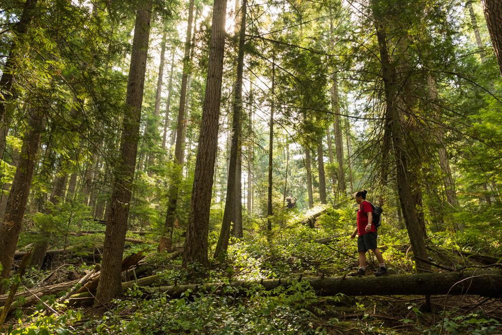 Diez Vistas Trail by Jaden Nyberg