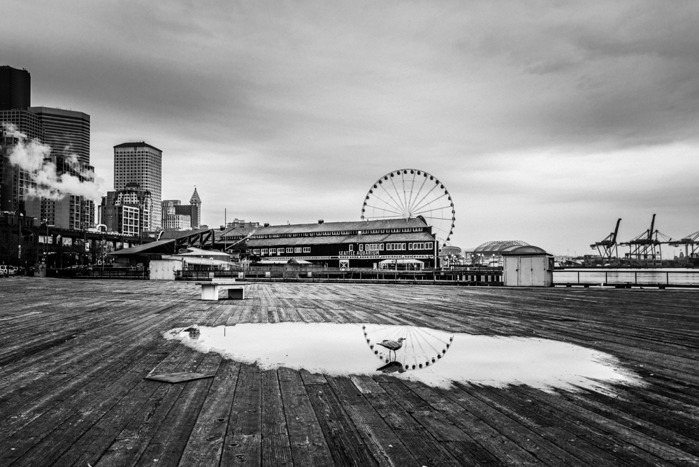 Seattle Reflections by Jaden Nyberg