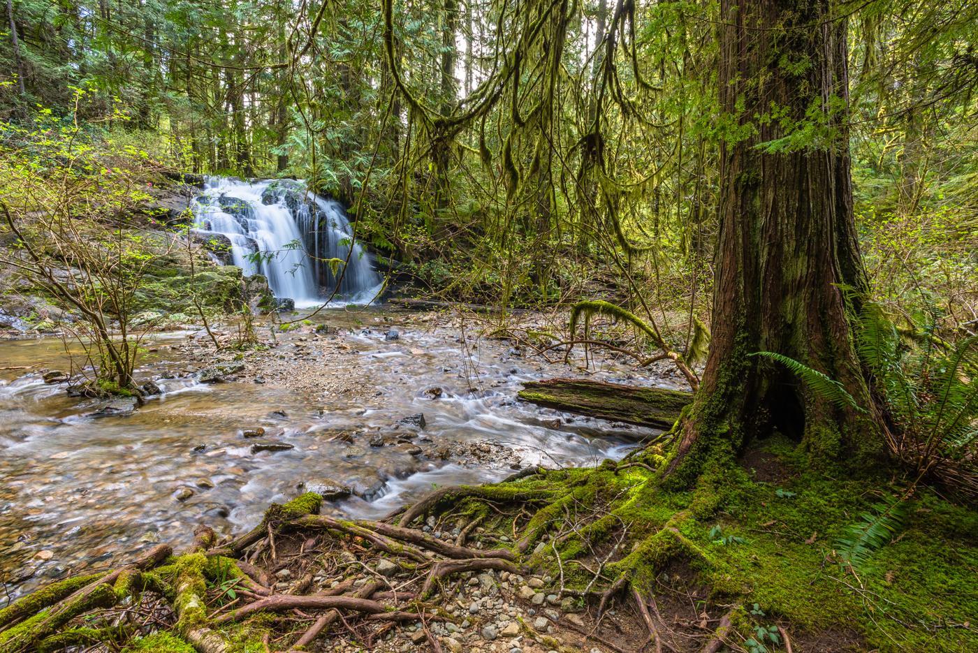 Homesite Creek Falls