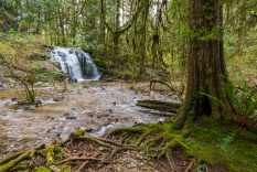 Homesite Creek Falls - Sunshine Coast, BC