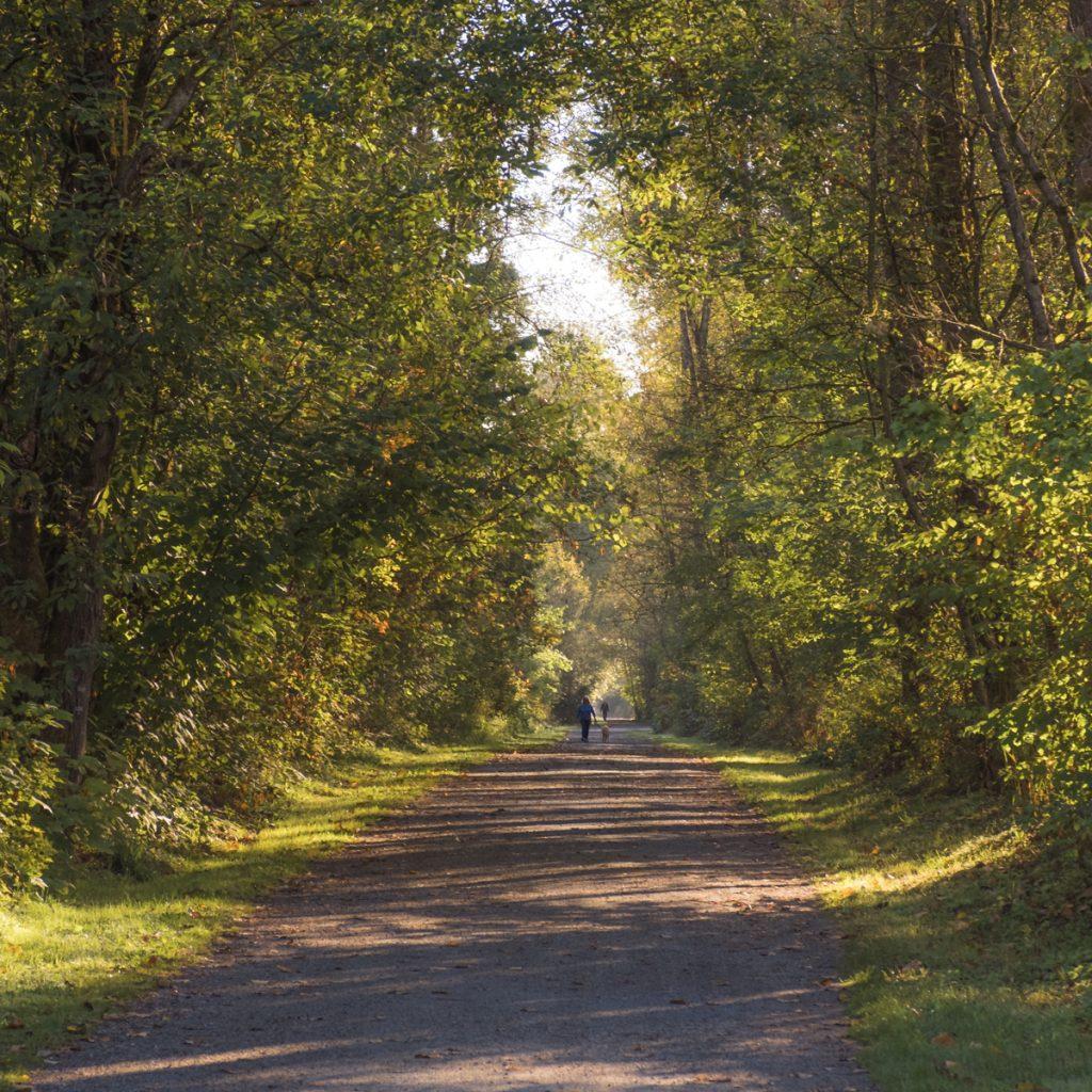 Walking in Deer Lake Park