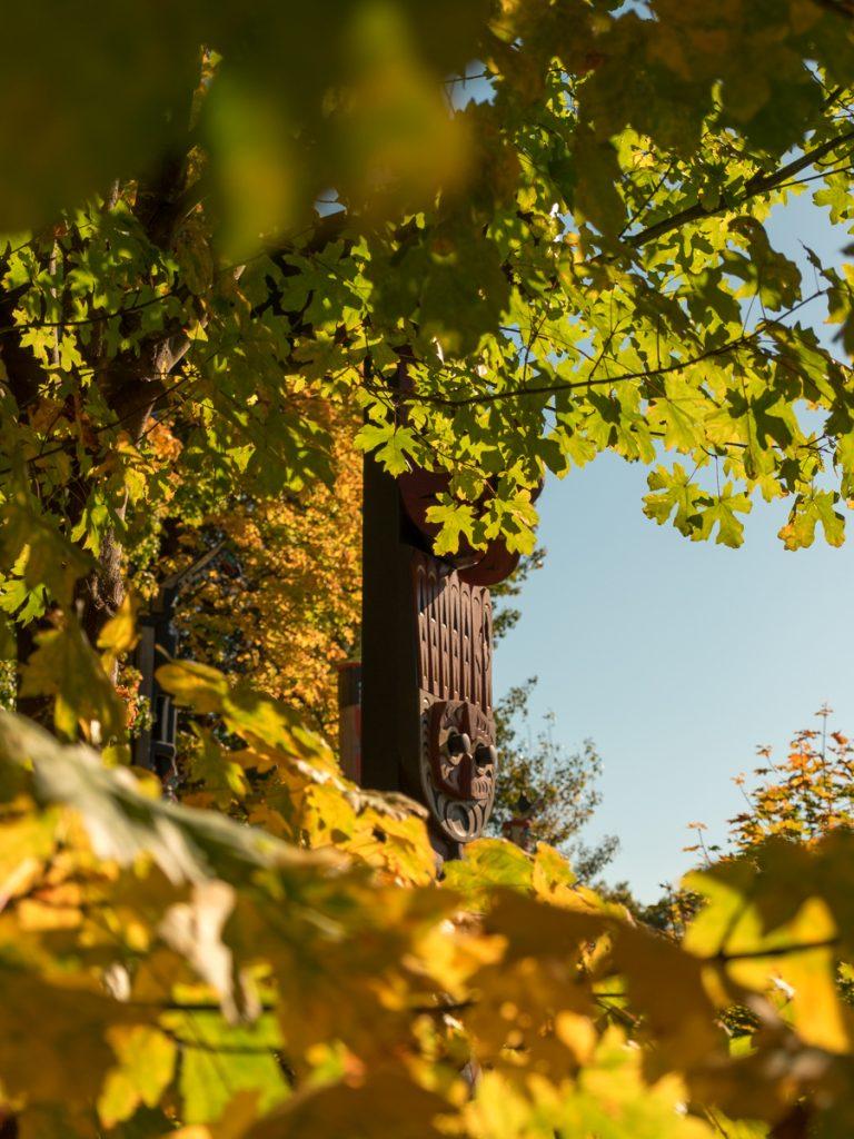 Fall Foliage and Totem