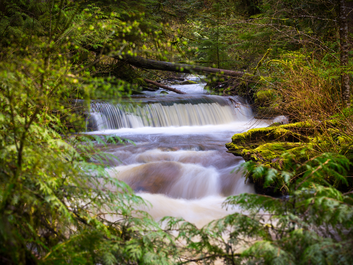 Swift Waterfall in Cliff Gilker Park
