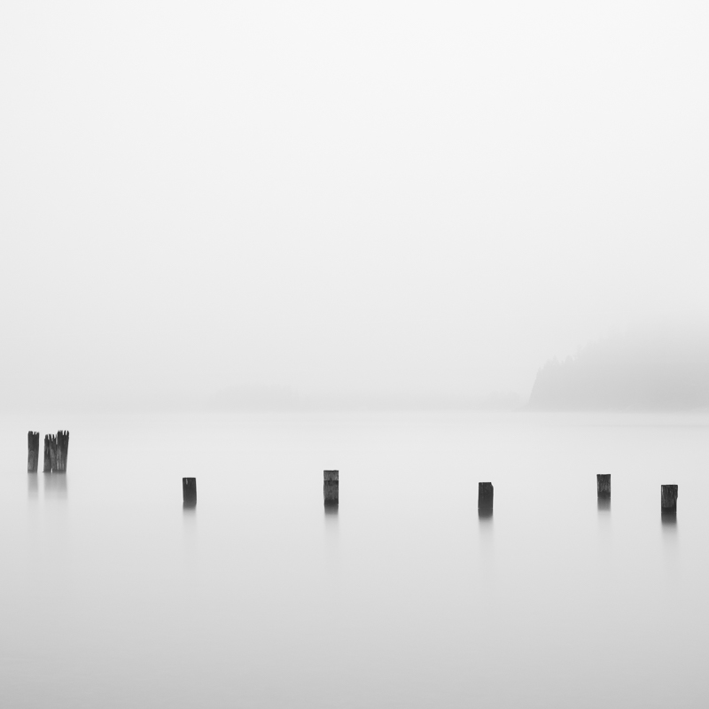 Barnet Marine Park - Fog and Pilings in the Ocean
